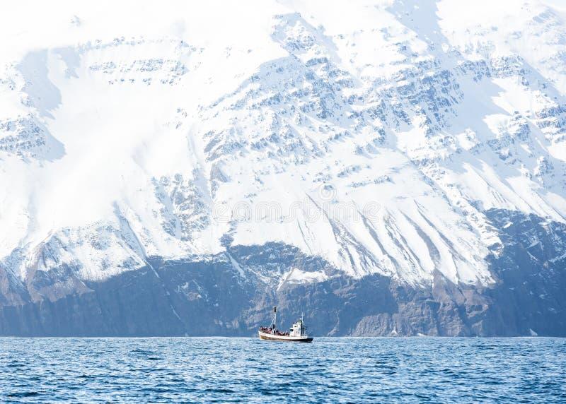 一条小船在有使的岩石多雪的山惊奇海在背景中 免版税库存图片