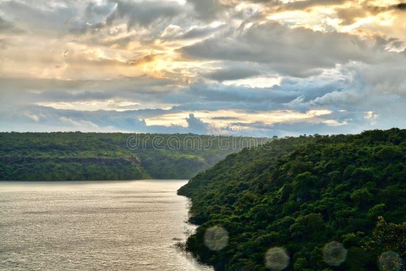 一条河在森林里 免版税图库摄影