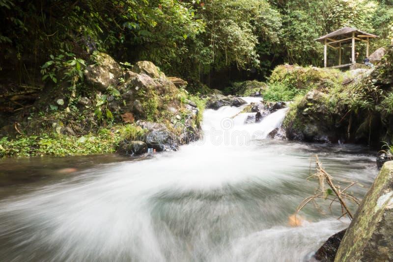 一条河在巴厘岛 免版税图库摄影