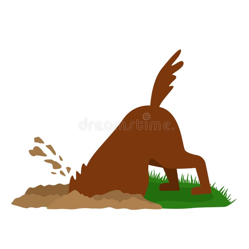 一条滑稽的狗开掘在沙子的一个大坑 r 皇族释放例证