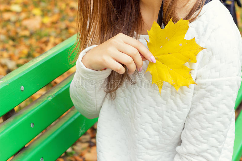 一条白色夹克和黑裤子的美丽的女孩有黄色叶子的在的手上坐长凳在秋天公园 免版税库存照片