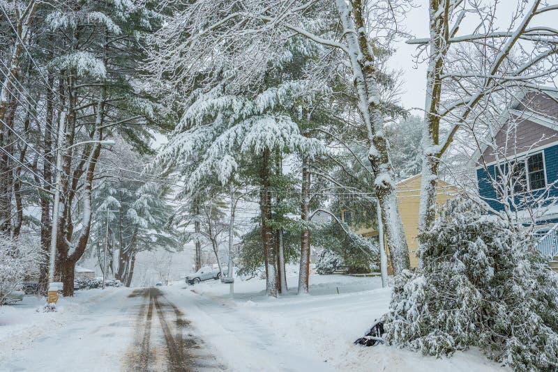 一条离开的街道在一个小美国镇,盖用雪 在雪的美丽的大针叶树 库存图片