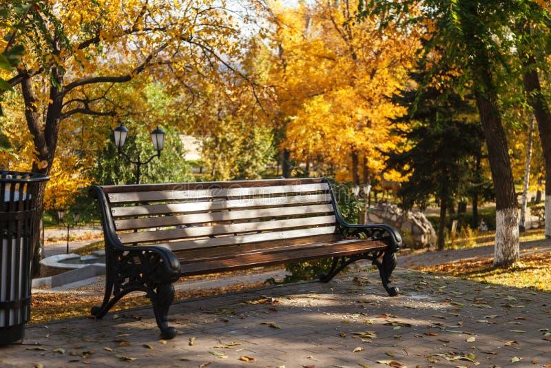 一条空的长凳在反对黄色树背景的秋天城市公园  都市休闲的概念 免版税图库摄影