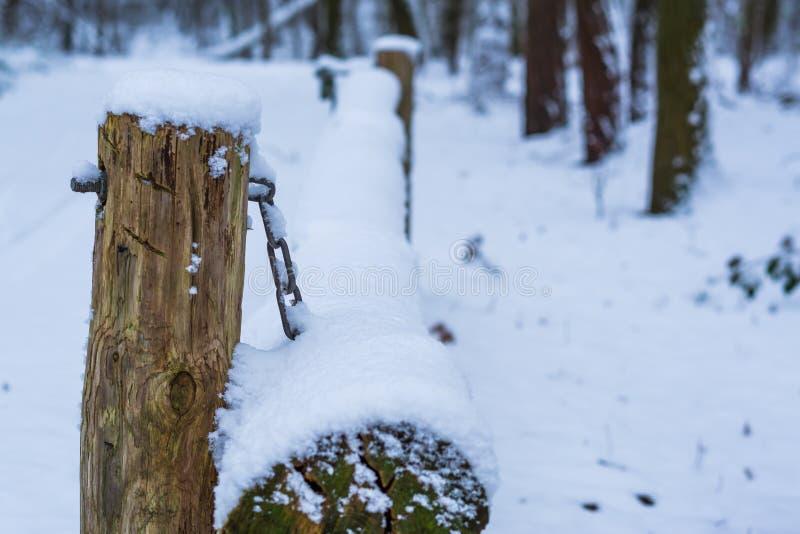 一条简单的木护拦射线的特写镜头在一个森林风景的在冬天季节期间,阻碍在雪层数盖的酒吧  免版税库存图片