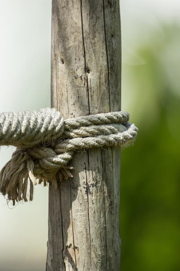 一条绳索和一个结在一块木头 免版税库存照片