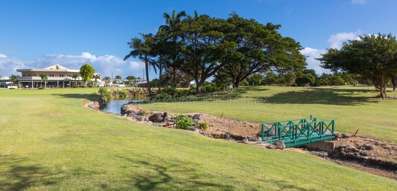 一条美丽的热带高尔夫球场航路以水危险 免版税库存图片