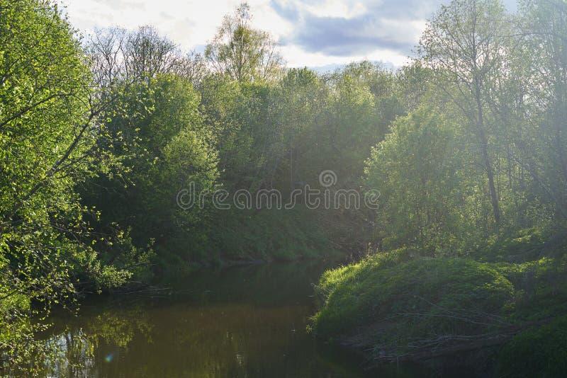 一条蜿蜒的河,河岸陡峭,草木茂密 图库摄影