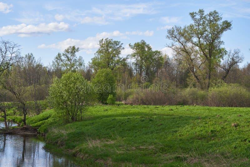 一条蜿蜒的河,河岸陡峭,草木茂密 免版税库存图片