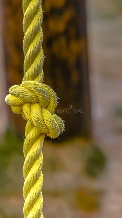 一条被打结的黄色绳索的看法的垂直的框架关闭与土的表面上 图库摄影