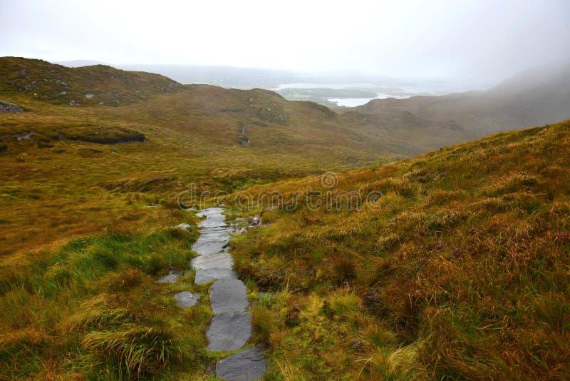 一条路通过康尼马拉国立公园在爱尔兰 库存图片