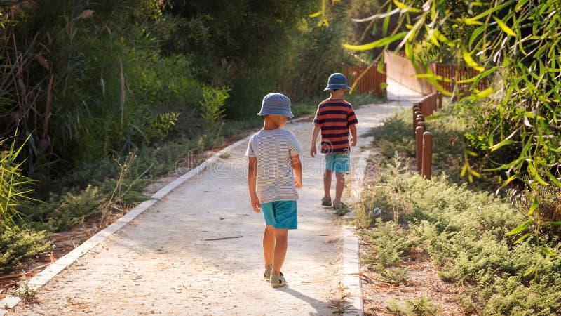 一条道路的孩子在自然公园 库存图片