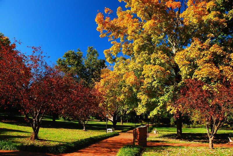 一条道路穿过一个五颜六色的秋天庭院 免版税库存图片