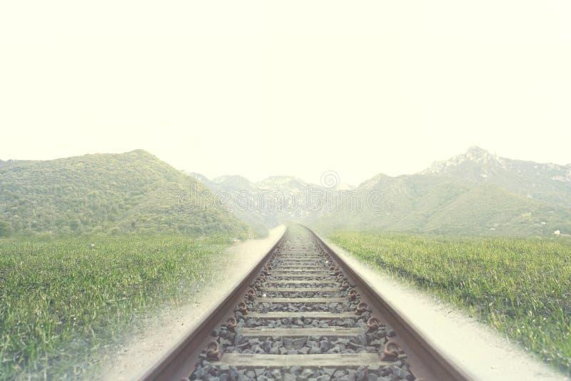 一条铁路的路轨在天生被包围的地方 免版税库存照片