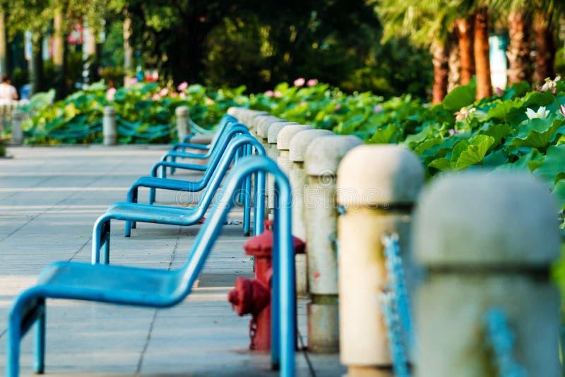 一条长凳在社区公园 免版税图库摄影