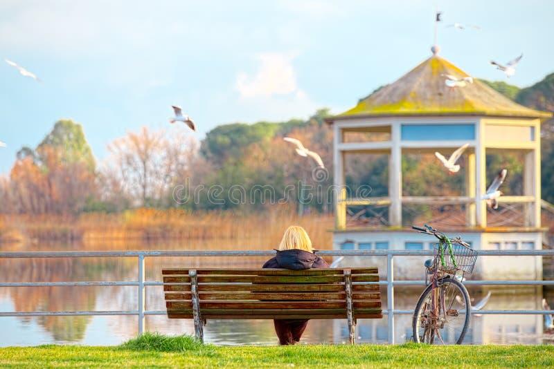 一条长凳的年长夫人由湖Torre del Lago普奇尼 库存照片