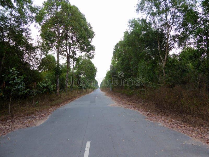 一条长的空的乡下公路在越南 图库摄影