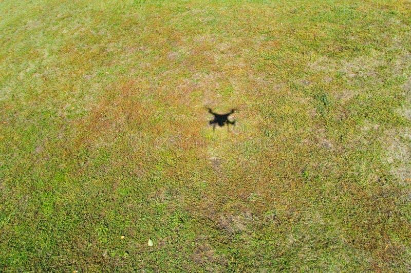一条飞行的寄生虫的阴影在用草报道的地面的 库存图片
