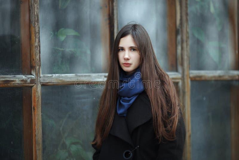 一条黑外套和蓝色围巾的年轻美丽的女孩一摆在的在秋天/春天公园 有gorgeo的一个典雅的深色的女孩 库存图片