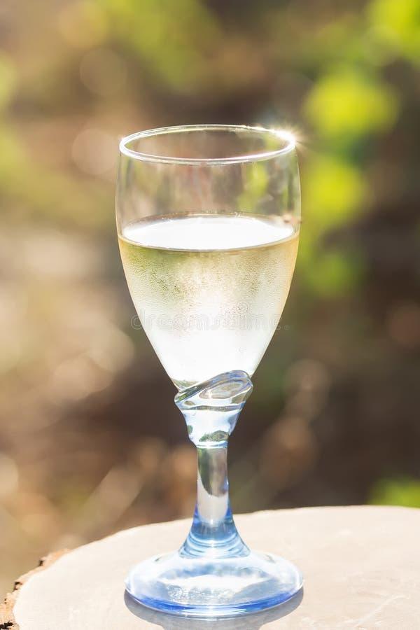 一杯在一个木板的新鲜的白酒在一明亮的好日子在一个葡萄园里在Salento,普利亚 图库摄影