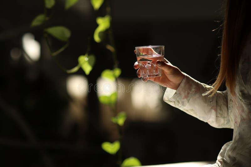 一杯干净的矿泉水在妇女的手上 环境保护,健康饮料的概念 免版税库存照片