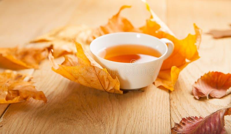 一杯茶与槭树落的秋叶的在木桌的背景的 库存照片