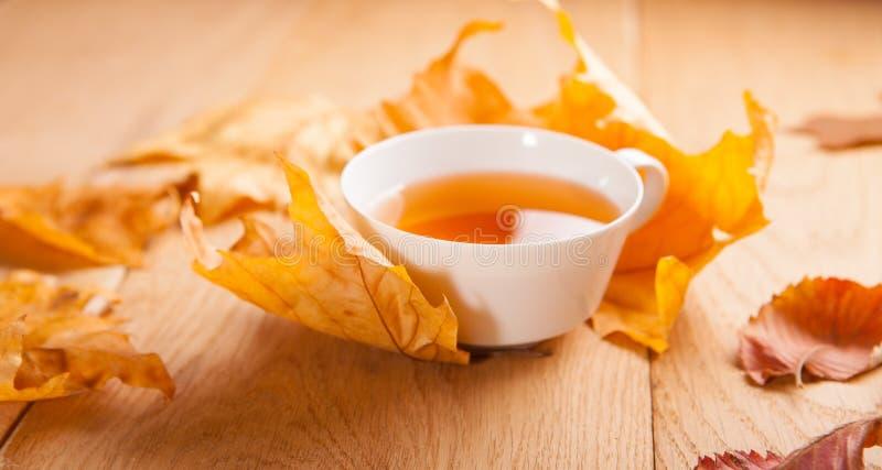 一杯茶与槭树落的秋叶的,在木桌的背景 库存图片