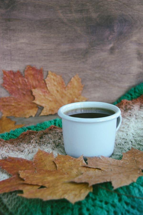 一杯茶在土气手工制造被编织的温暖的秋天或冬天围巾褐色、桔子、白色、绿色和灰色颜色和槭树le附近的 免版税库存图片