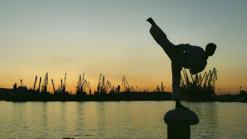 一架跆拳道战斗机的剪影在日落的在海 库存照片
