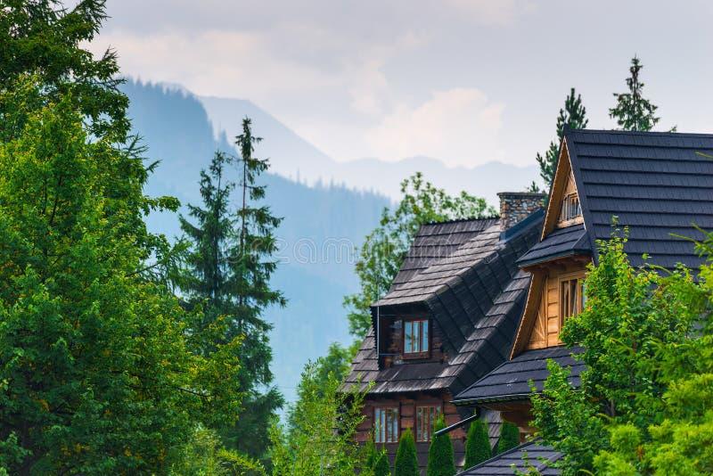 一栋别墅的屋顶在森林里有看法 免版税库存照片