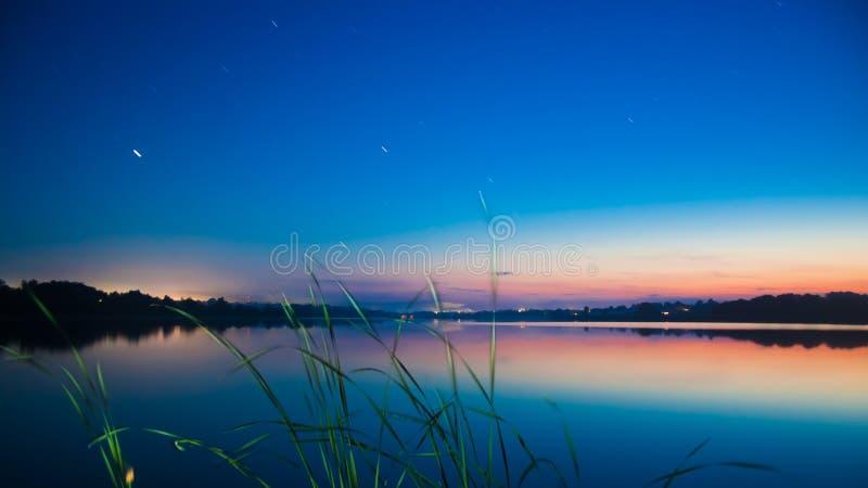 一株纸莎草的叶子在风的在日落以后的一个大,安静和平安的夏天乡下池塘 库存图片
