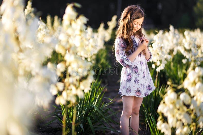 一根逗人喜爱的一点girlwith长的头发的画象在外部的在获得白色丝兰的花的领域的日落乐趣 库存图片