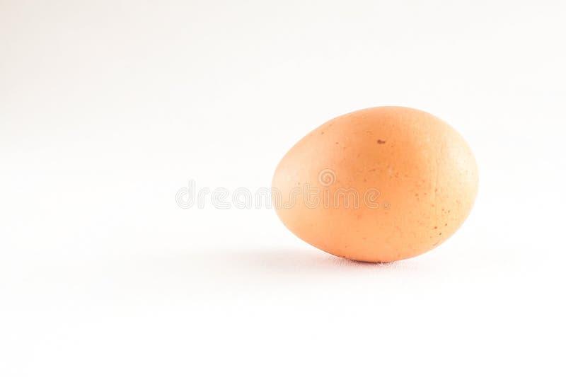 一棕色蛋白背景 免版税库存照片