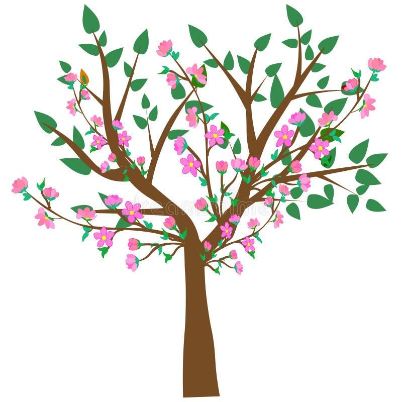 ? 一棵抽象开花的樱桃树的传染媒介例证反对白色背景的 皇族释放例证