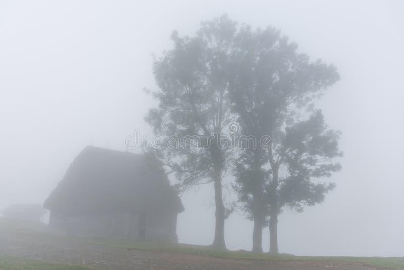 一棵有雾的早晨的美好的山风景与和老房子和树 库存图片