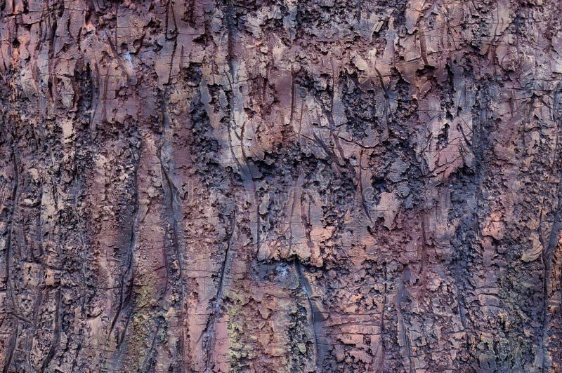 一棵树的吠声的模仿从陶瓷的 免版税库存照片