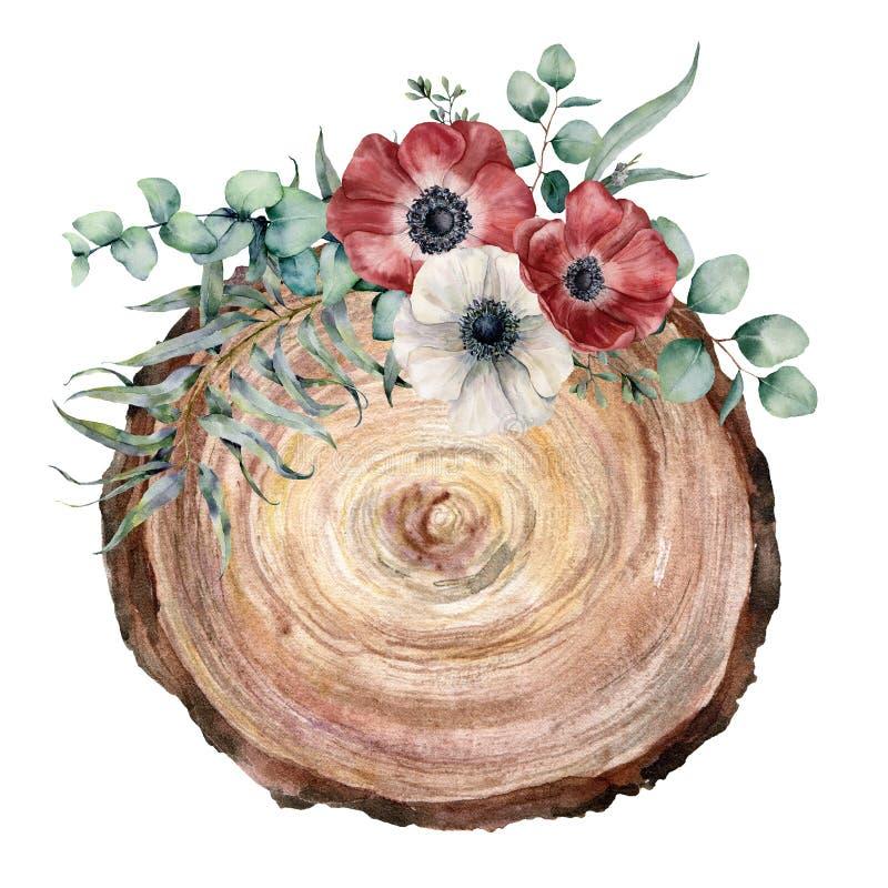 一棵树的水彩横断面与银莲花属花束的 手画红色和白花和eucaliptus叶子 向量例证