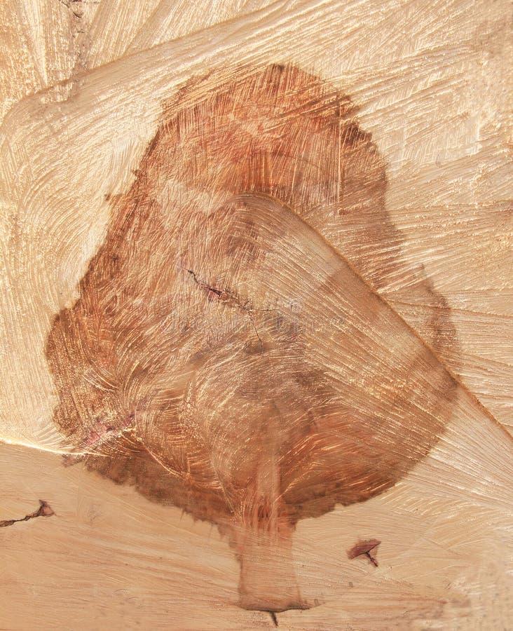 一棵树的画象在树桩的 库存图片