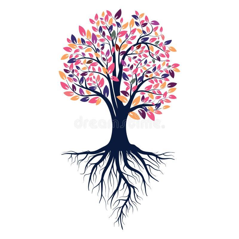 一棵树的秋天剪影与色的叶子的 根源结构树 背景查出的白色 减速火箭的20世纪80年代称呼颜色 向量 皇族释放例证