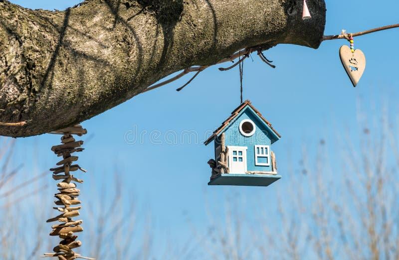一棵树的蓝色木鸟房子在公园 图库摄影