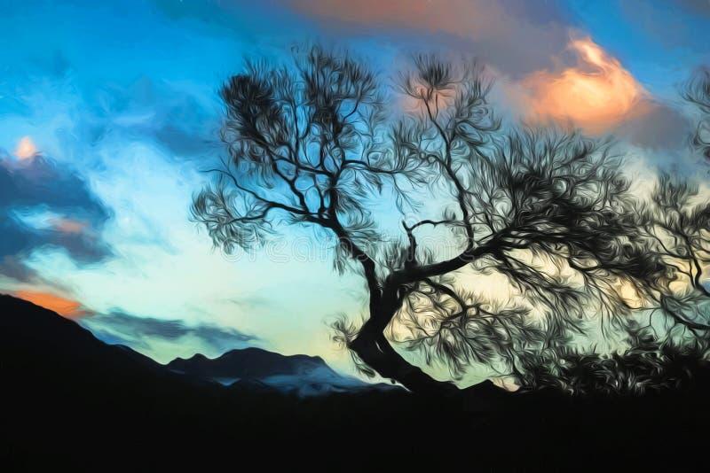 一棵树的被绘的剪影在黄昏的 库存图片