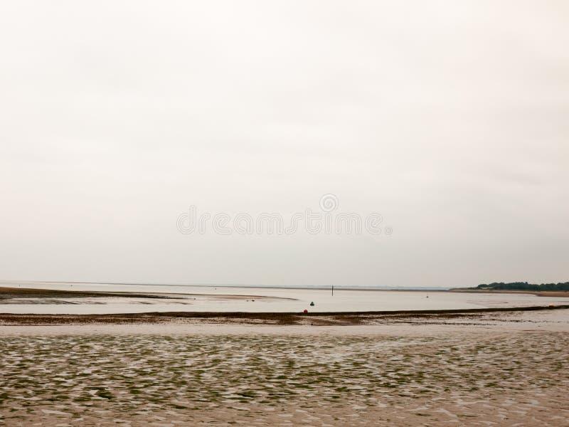 一棵空的河阴云密布天海滩泥海草 库存照片