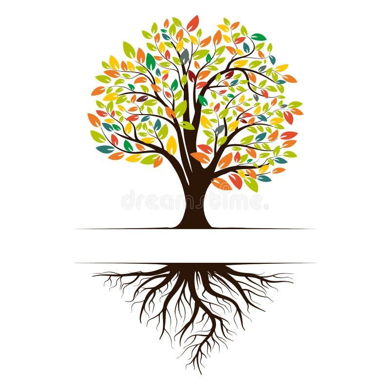 一棵绿色树的商标与根和叶子的 传染媒介在白色背景隔绝的例证象 向量例证