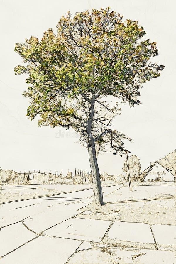 一棵老树的创造性的例证在宽领域前面的 库存例证
