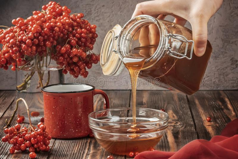 一棵荚莲属的植物的静物画莓果在玻璃和杯子的热的茶和蜂蜜 图库摄影