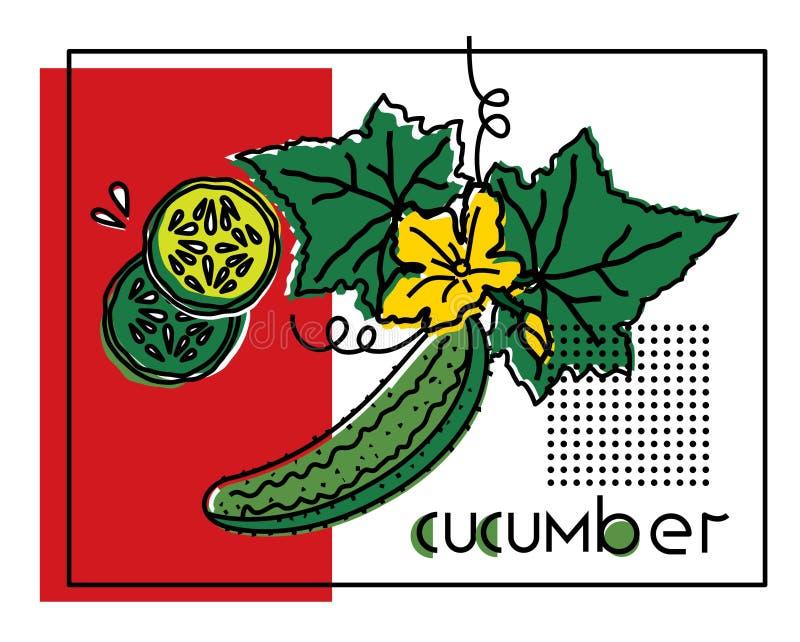 一棵菜的传染媒介图象用原始的题字黄瓜 库存例证