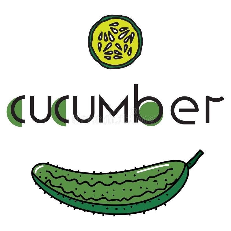 一棵菜的传染媒介图象用原始的题字黄瓜 向量例证