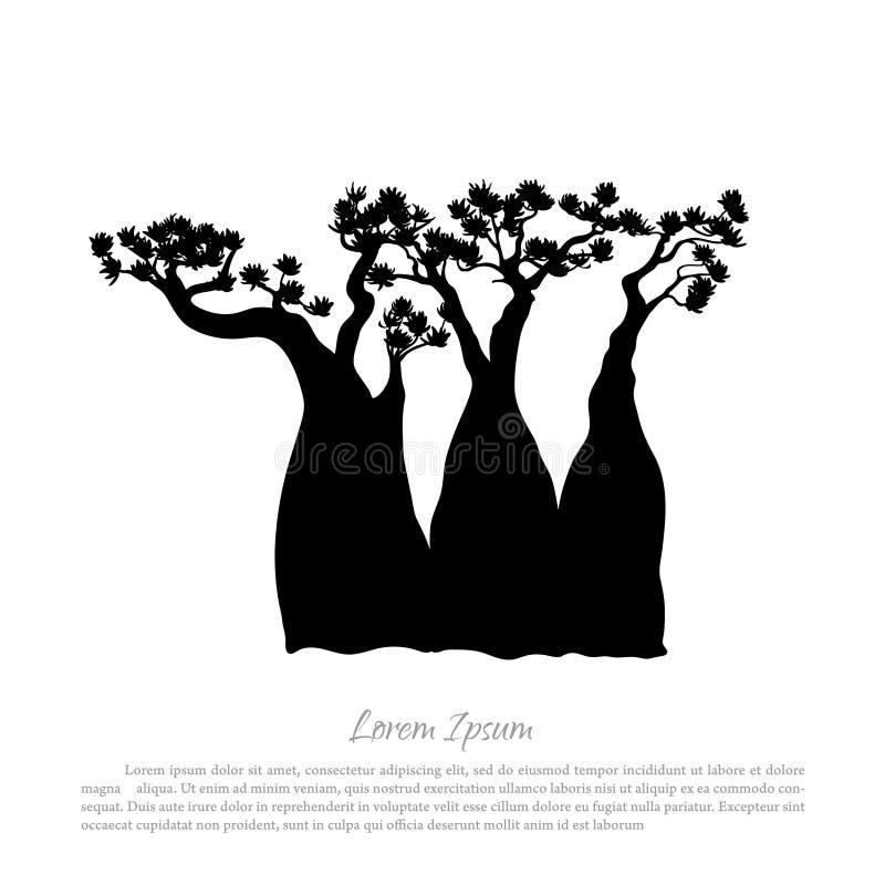 一棵猴面包树的黑剪影在白色背景的 澳大利亚自然 judean的沙漠 皇族释放例证