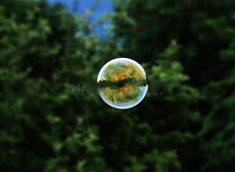 一次一次绿色,红色,橙色和蓝色泡影飞行在森林背景的天空中 在泡影我们能看到反映我们的家 库存图片
