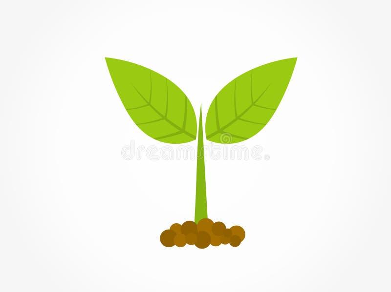 一点发芽从土壤象的绿色植物 皇族释放例证