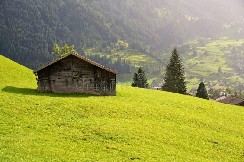 一点房子和绿色领域与山作为背景在雨天 grindelwald瑞士 库存照片